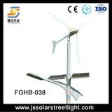 50W de Zonne Hybride Straatlantaarn van de wind