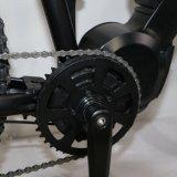 MTBのための新しいモデルの電気バイク