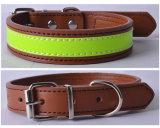 O colar de cão de couro acolchoado macio da venda por atacado do projeto simples, Bling perlou o colar de cão
