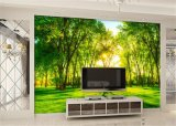 Fernsehapparat-Wandbild-kundenspezifische Wand-Aufkleber-Wandtapeten-Hintergrund-Tapete