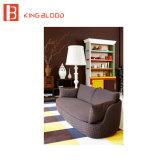 Conjuntos del sofá de la calesa de la tela del surtidor de China