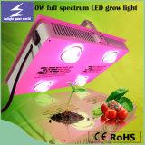 Lo spettro completo caldo di alto potere 600W LED di vendita coltiva l'indicatore luminoso