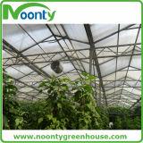 Alambre colgante del tomate para el accesorio del vehículo del invernadero de la granja