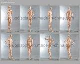 Mannequins femminili realistici del ODM per il vestito dalla visualizzazione dei boutique