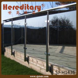 Poste en verre de frontière de sécurité d'acier inoxydable pour la pêche à la traîne en verre d'escalier (SJ-H5064)