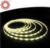 Indicatore luminoso di striscia di SMD3528 SMD2835 SMD5050 SMD5630 12V LED