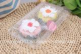 Wegwerftransparente Zwei-Packen Kuchen-Blasen-Kasten