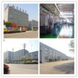 25 Jahre Wholesale Hersteller-Messingrückschlagventil