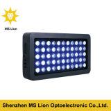 Luz azul del acuario del blanco LED de AC85-265V 165W