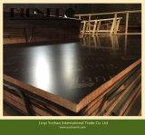 La construcción de edificios utilizó la madera contrachapada hecha frente película del precio bajo