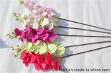 나방 난초가 2017년 기우는 Prouct 고품질 난초 꽃 인공 실크에 의하여 꽃이 핀다