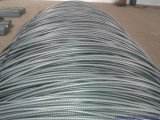 Q235, filo di acciaio laminato a caldo di SAE10081008/B Rod, vergella