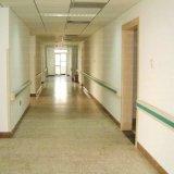 Más apoyabrazos de la seguridad de la barandilla del pasillo del PVC del hospital de los colores