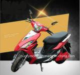 1000W電気オートバイのスクーターによっては、電気が自動車に乗る(VGR)