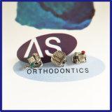 L'auto ortodontico dentale di stile di Damon Q che lega le parentesi con tutta la parentesi può ami
