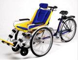 2017 شحن جديدة [تريك] كهربائيّة مع كرسيّ ذو عجلات ([دت-030])