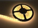자전거를 위한 RGBW LED 지구