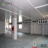 Unidad de refrigeración del sitio de los productos del mar/de conservación en cámara frigorífica de los mariscos