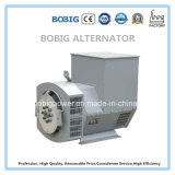 Generador diesel 15kw Con tecnología de China Yangdong motor