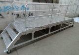 Échelle en aluminium réglable industrielle avec la balustrade pour la plate-forme mobile