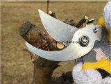 Las tijeras de podar de puente sostenido profesional, Scissor, hacen los cortes limpios, grandes para las manos. Tijeras de podar, mano Pruner, esquileos de jardín, cizallas para el Gardenesg10150