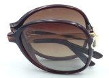 Óculos de sol Foldable da forma do projeto F171101 novo que dobram vidros de Sun