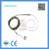 Type engainé par 2mm thermocouple de Feilong K