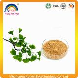 Polvere dell'estratto di Biloba del Ginkgo dell'estratto della pianta