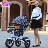 Wandelwagen van de Baby van de Fabrikant van de Wandelwagen van de Baby van China de In het groot