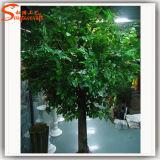 Arbre bon marché artificiel d'usine de Ficus de constructeur de Guangzhou grand