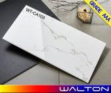 Плитка стены белизны 300X600mm Carrara керамическая (WT-CA101)