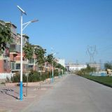 60W LED Lampen-Solarstraßenlaternefür Datenbahn