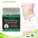 Ganodermaの健康および美の心配の中国の細くのコーヒー