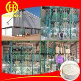Algeria 60t Per24h Farina di frumento fresatrice per diversi gradi di buon Farina