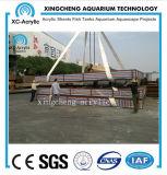 Overzeese van het Project van het aquarium de Acryl Materiële AcrylPrijs van de Wereld