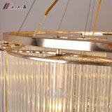 Lampada Pendant Chandlier del cerchio semplice moderno per il salone