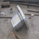 Parte calda dello Special di pezzo fucinato del acciaio al carbonio SAE1055