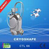 Détruire effectivement le corps de Coolsculpting de vide de Cryo de poids amincissant le matériel