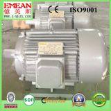 Электрический двигатель трехфазной y серии электрического двигателя малый