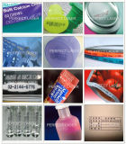 세륨 SGS 산업 잉크젯 프린터로