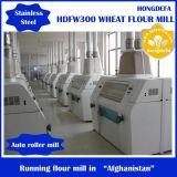 製粉機、小麦粉の製造所(10-300T)