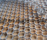 Ss304 Ss410 Hex Hexagon-Netz der Schildpatt-Netz-Stärken-2.2mm/SS 304