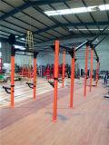 Matériel de forme physique/matériel de gymnastique/Crossfit (MJ-15)