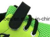 子供の注入のズック靴のスポーツは偶然の履物の靴に蹄鉄を打つ