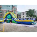 デザインおかしい大人のサイズプールまたは屋外の緑のスライドが付いている巨大で膨脹可能な水スライド