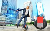 高品質の自己のBalacingの電気Unicycleのスクーター