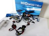 WS 55W H11 HID Light Kits mit 2 Regular Ballast und 2 Xenon Lamp