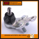 Joint à rotule pour Toyota Camry Acv30 43340-29175