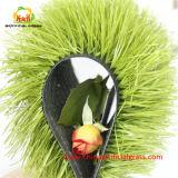Mini relvado sintético de Futebol Sinistro Grass