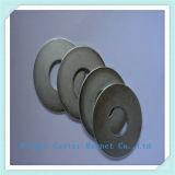 Magnete di anello permanente del neodimio per gli altoparlanti